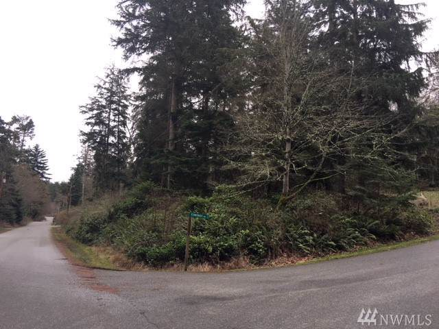 0-XXX Denneboom Rd, Coupeville, WA 98239 (#1559400) :: The Kendra Todd Group at Keller Williams