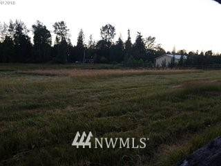 16338 NE 170th Ave, Brush Prairie, WA 98606 (#1563250) :: Mike & Sandi Nelson Real Estate