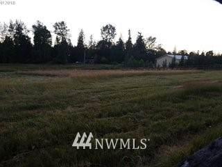 16338 NE 170th Ave, Brush Prairie, WA 98606 (MLS #1563250) :: Community Real Estate Group