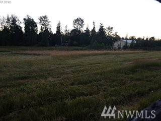 16338 NE 170th Ave, Brush Prairie, WA 98606 (#1563250) :: NextHome South Sound