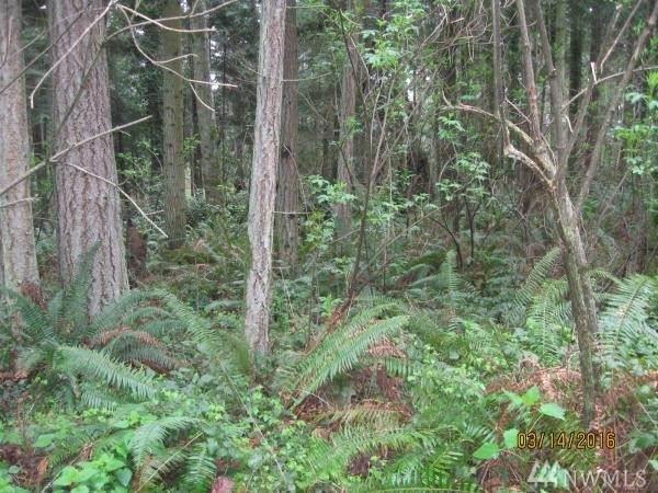 2443 South Camano Dr, Camano Island, WA 98282 (#1564172) :: The Kendra Todd Group at Keller Williams