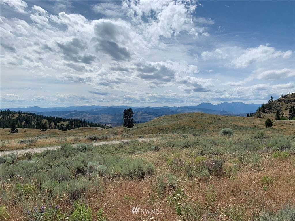0 Tbd Blue Grouse Road - Photo 1