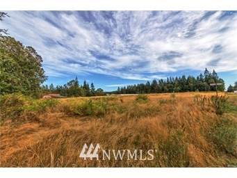 999 Hwy 20, Port Townsend, WA 98368 (#1564996) :: Canterwood Real Estate Team