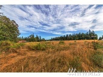 999 Hwy 20, Port Townsend, WA 98368 (#1564996) :: M4 Real Estate Group