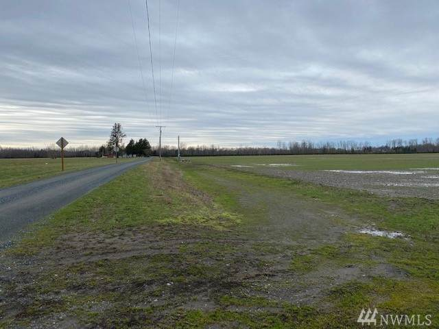 0 Cole Rd, Everson, WA 98247 (#1567429) :: The Kendra Todd Group at Keller Williams