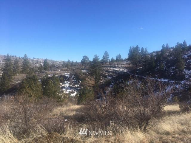 111 Hwy 97, Malott, WA 98829 (MLS #1568079) :: Community Real Estate Group
