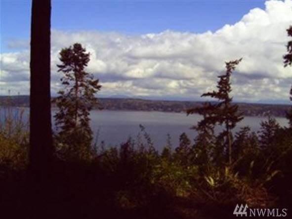 4 Preserve Dr, Camano Island, WA 98282 (#1570338) :: Lucas Pinto Real Estate Group