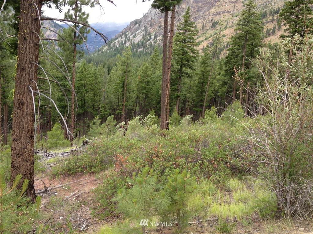 0 Tyee View Entiat River Road - Photo 1