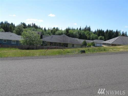 223 Elnor Dr, Montesano, WA 98563 (#1572004) :: The Kendra Todd Group at Keller Williams