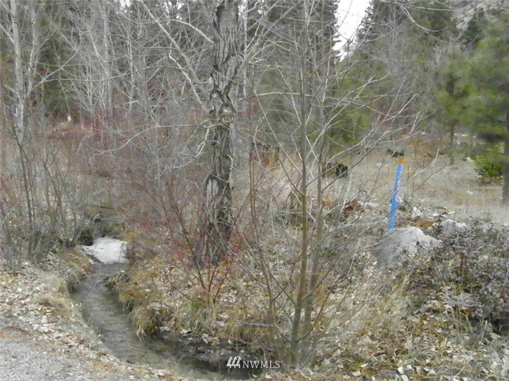 13527 Entiat River Road - Photo 1