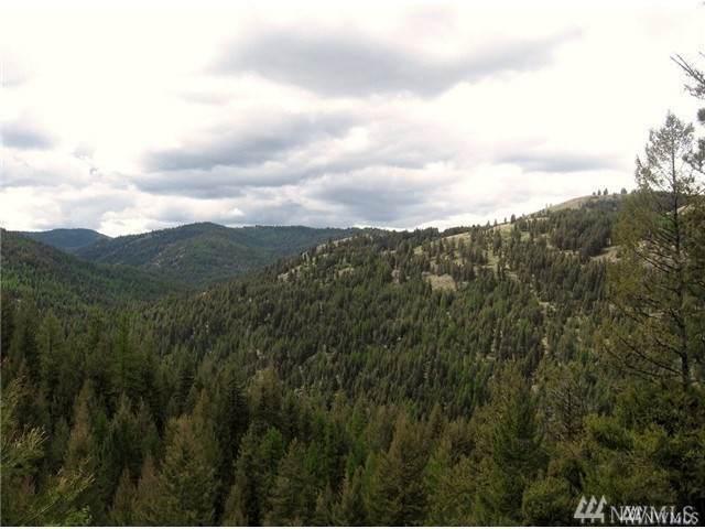 8 Cougar Creek Road, Tonasket, WA 98855 (MLS #1573148) :: Nick McLean Real Estate Group