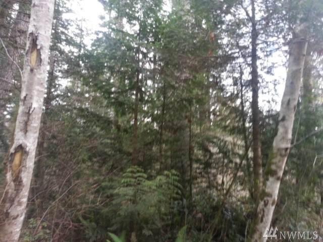 453 Rice Lake Rd, Quilcene, WA 98376 (#1574355) :: The Kendra Todd Group at Keller Williams