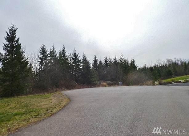 225 Volcano Lane, Napavine, WA 98565 (#1579544) :: NW Home Experts