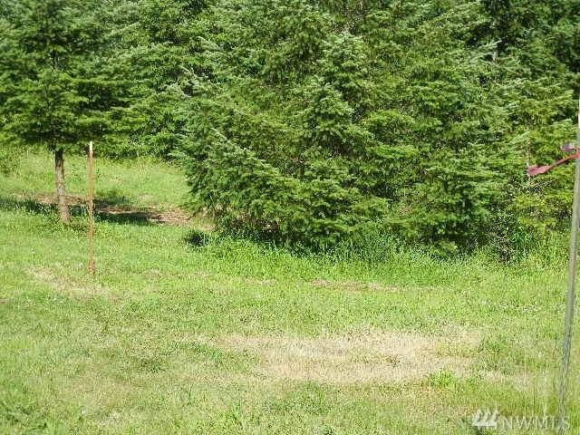 185 Pandora Pointe Rd, Woodland, WA 98674 (#1582200) :: Mary Van Real Estate