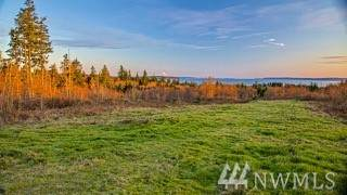 23-XX Thompson Rd, Langley, WA 98260 (#1582614) :: Mary Van Real Estate