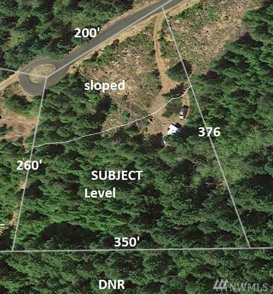 951 N Hamma Ridge Dr, Lilliwaup, WA 98555 (#1584738) :: The Kendra Todd Group at Keller Williams