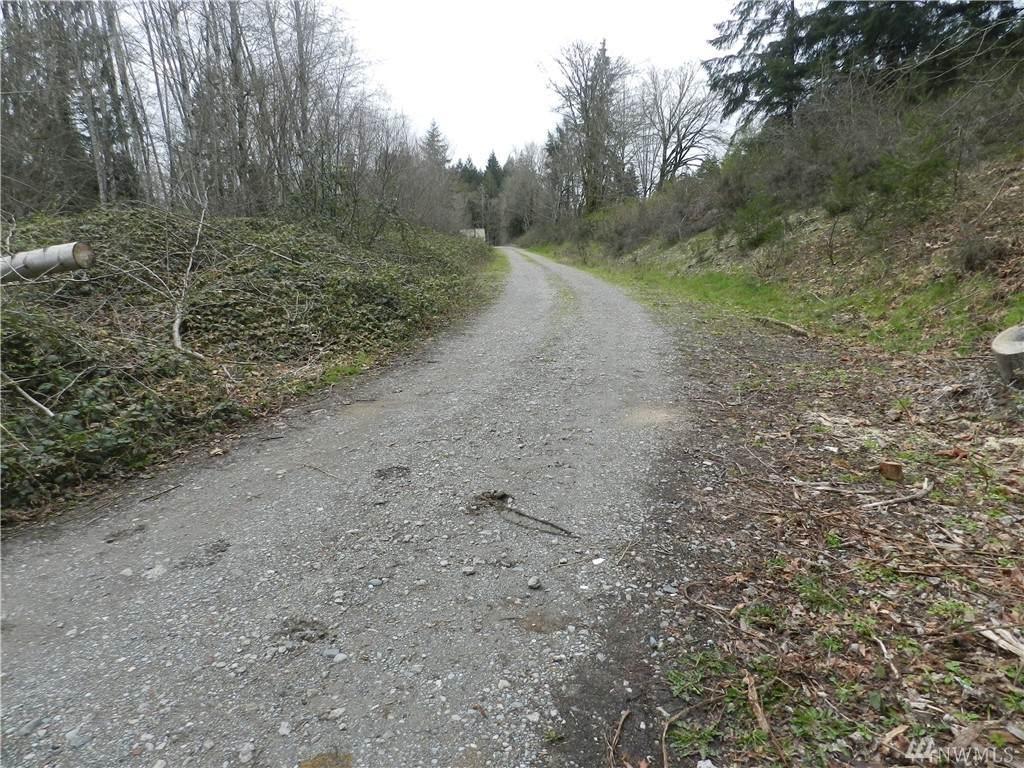 0 Maple Rd - Photo 1