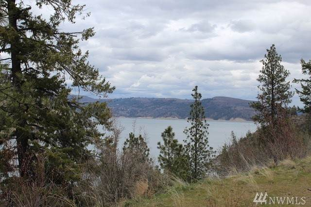 Bluff Overlook Point N, Lincoln, WA 99147 (#1586211) :: Mosaic Realty, LLC