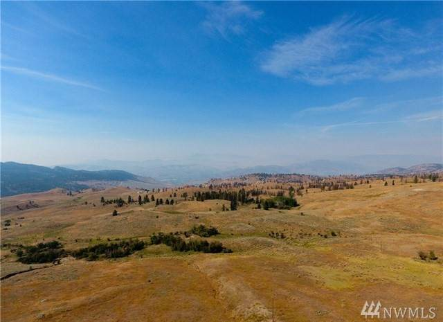 0 Tbd Rise Rd, Oroville, WA 98844 (MLS #1586263) :: Nick McLean Real Estate Group