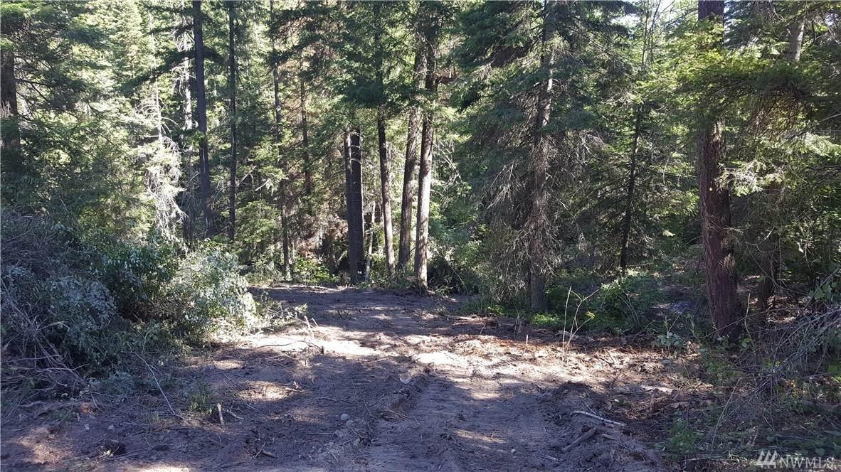 0-xxx Thornton Creek Lane - Photo 1