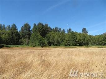 0 Falls Rd, White Pass, WA 98377 (#1596155) :: Capstone Ventures Inc