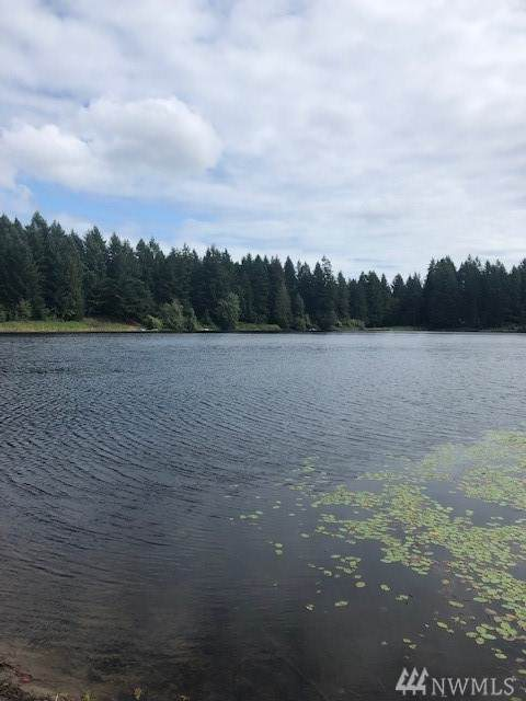 3713 Jackson Lake Rd NW, Lakebay, WA 98349 (#1610975) :: Priority One Realty Inc.