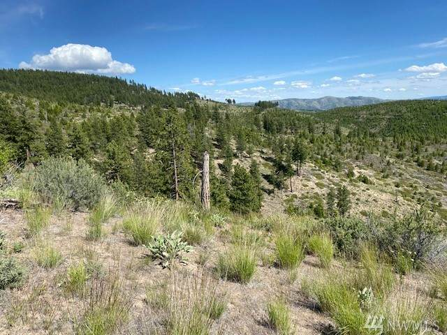 1 Usfs Rd 312 Rd B, Entiat, WA 98822 (#1611947) :: The Kendra Todd Group at Keller Williams