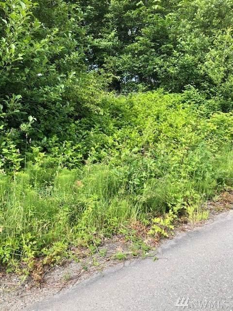 38376 Vista Key Dr NE, Hansville, WA 98340 (#1614939) :: Better Homes and Gardens Real Estate McKenzie Group