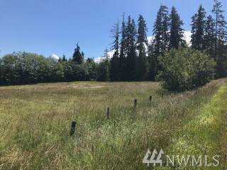 9999 Airport Rd, Port Angeles, WA 98363 (#1615419) :: Better Properties Lacey