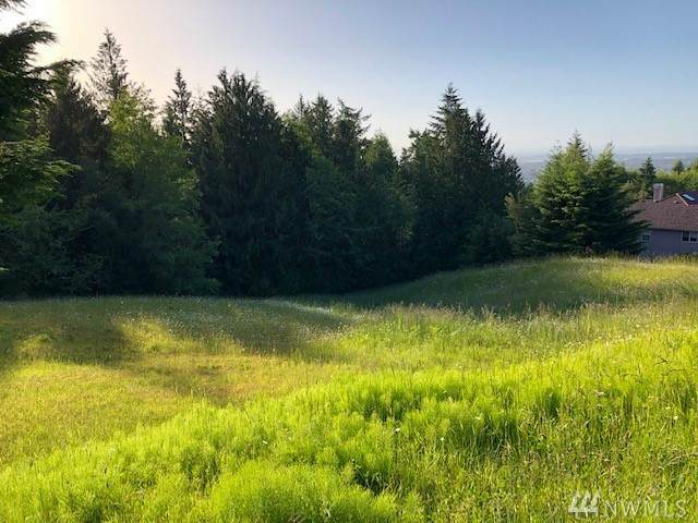 999 Fox Hollow Road, Sequim, WA 98382 (#1622651) :: Ben Kinney Real Estate Team