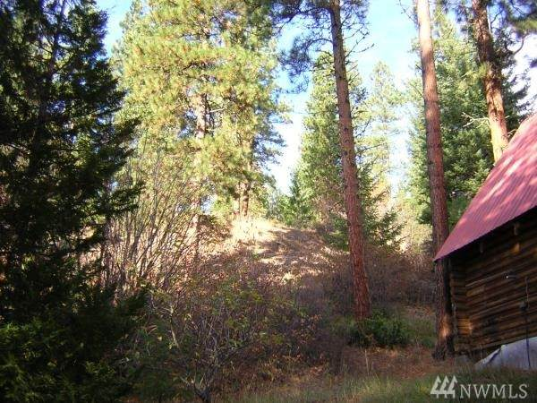 17615 Chumstick Highway, Leavenworth, WA 98826 (#1626045) :: Better Properties Lacey