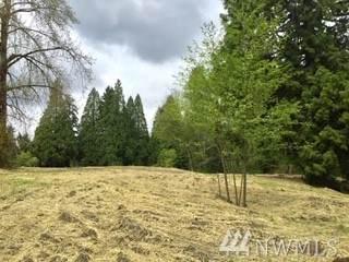 23825 51st Ave Se, Woodinville, WA 98072 (#1628342) :: Pickett Street Properties