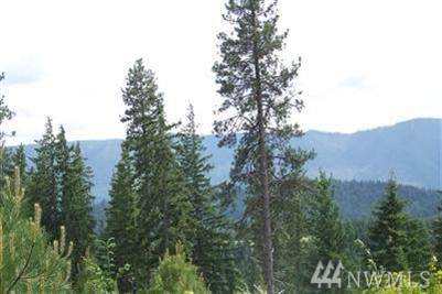 3841 Swiftwater Drive, Cle Elum, WA 98922 (#1629993) :: Lucas Pinto Real Estate Group