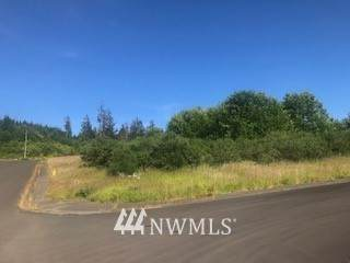 201 Murre Court, Hoquiam, WA 98550 (#1633002) :: TRI STAR Team | RE/MAX NW