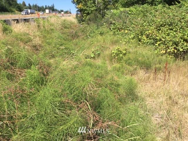 9999 W Highway 101 Highway, Port Angeles, WA 98362 (MLS #1634003) :: Community Real Estate Group