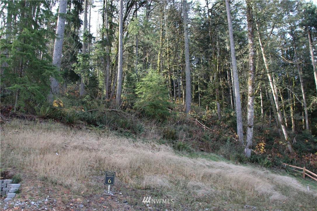 17845 Cougar Mountain Drive - Photo 1