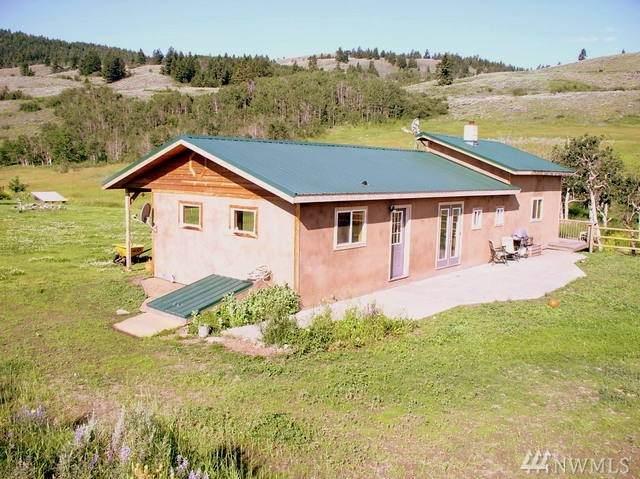 980-D Ellemeham Mountain Rd, Oroville, WA 98844 (#1634342) :: Ben Kinney Real Estate Team