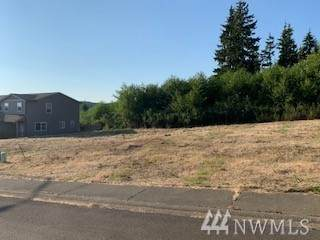 0 Sanderling Drive, Hoquiam, WA 98550 (#1638053) :: NextHome South Sound