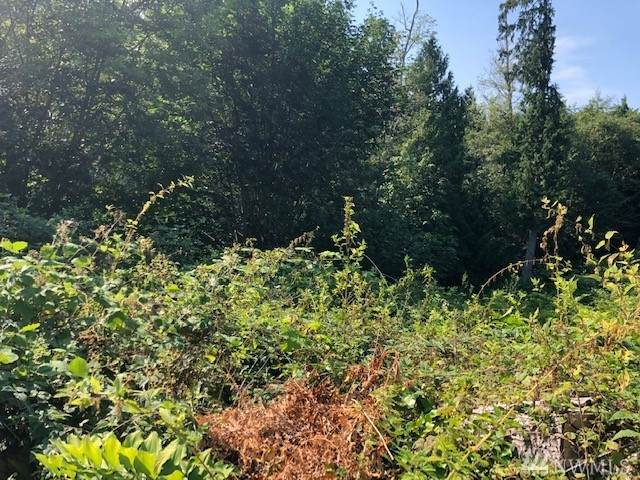 0 Lot 36,37,38 Bridgeview Place NE, Kingston, WA 98346 (#1640019) :: Mike & Sandi Nelson Real Estate