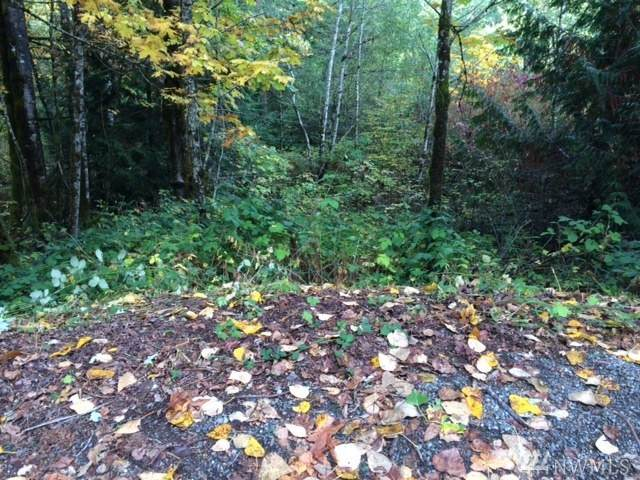 25116 SE 146th St, Issaquah, WA 98027 (#1643982) :: Better Properties Lacey