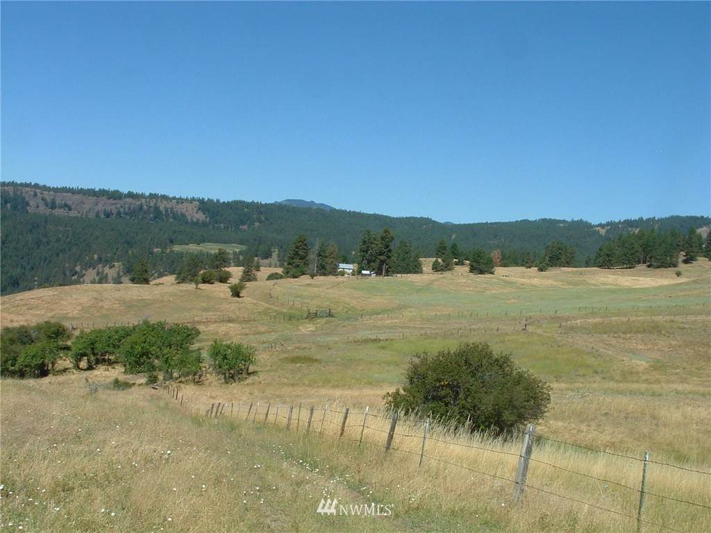 0 Cougar Creek Road - Photo 1
