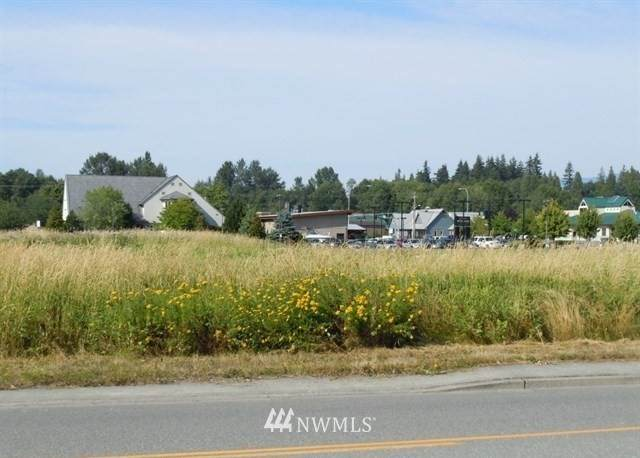 1101 Roosevelt Avenue, Mount Vernon, WA 98273 (#1648961) :: Ben Kinney Real Estate Team