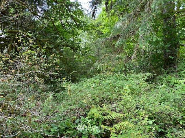 380 W Satsop Maple Glen Road, Elma, WA 98541 (#1650124) :: Better Properties Lacey