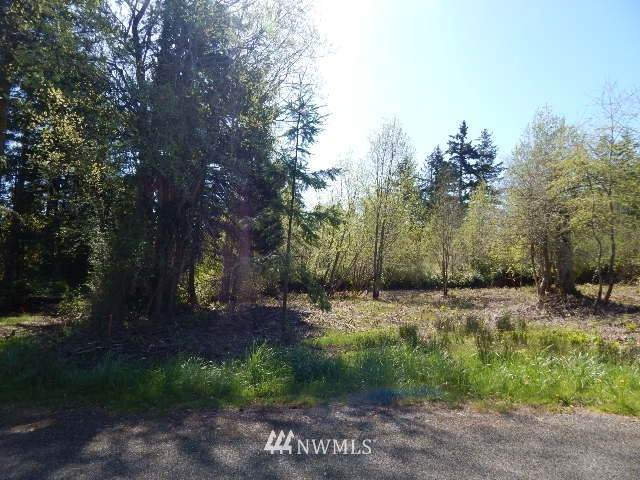 242 Ann Kivley Drive, Port Hadlock, WA 98339 (#1651643) :: Ben Kinney Real Estate Team