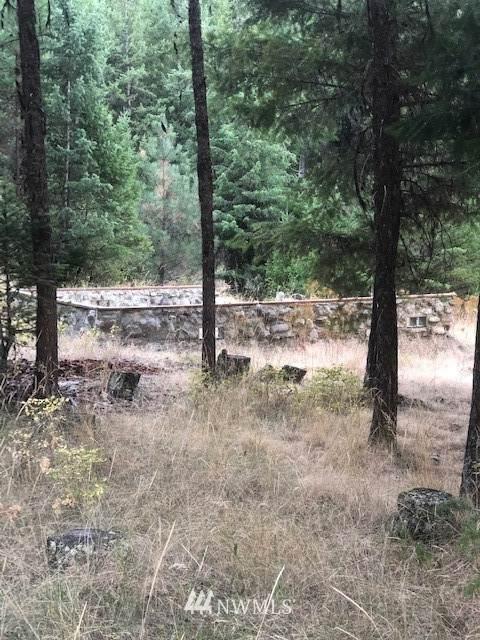 75 Coby Creek Spur, Tonasket, WA 98855 (#1654922) :: Pacific Partners @ Greene Realty