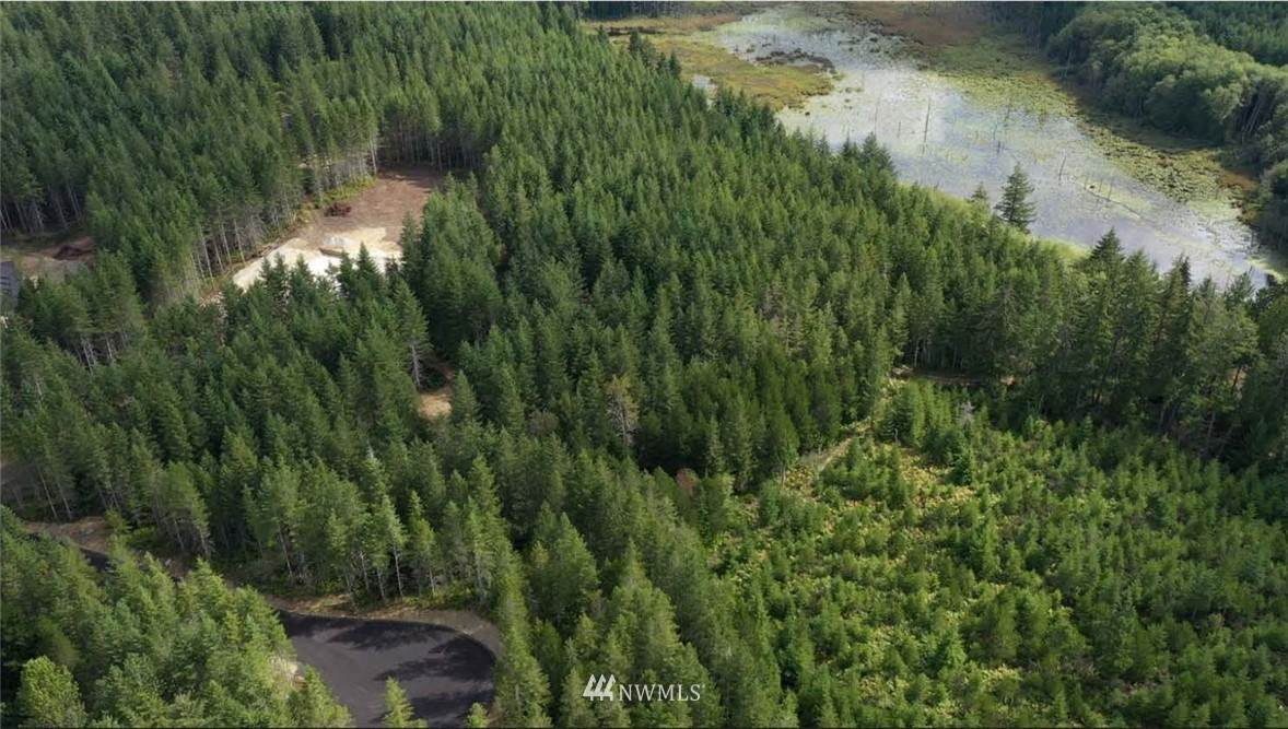 0 Lot 7 Lake Flora Road - Photo 1