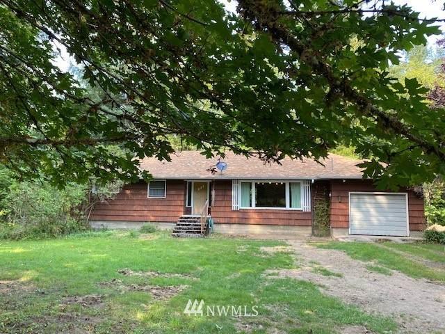 230 Frank Smith Road, Toutle, WA 98649 (#1659758) :: Ben Kinney Real Estate Team