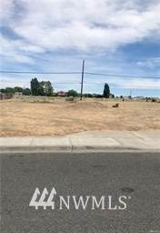 1331 S Skyline Drive, Moses Lake, WA 98837 (#1661423) :: Pacific Partners @ Greene Realty