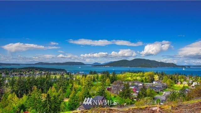 3913 Rock Ridge Parkway, Anacortes, WA 98221 (#1664158) :: NextHome South Sound