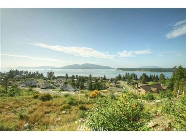 2815 W 3rd Street, Anacortes, WA 98221 (#1664255) :: Ben Kinney Real Estate Team